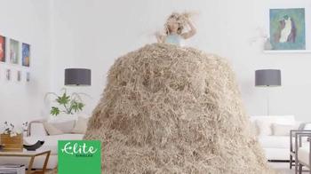 Elite Singles TV Spot, 'Needle in a Haystack' - Thumbnail 2