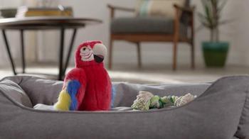 Lowe's TV Spot, 'Parrot'