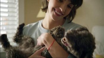 SKECHERS BOBS TV Spot, 'BOBS for Dogs + Best Friends Animal Society'