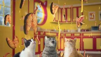 Friskies Cat Concoctions TV Spot, 'Flavor'