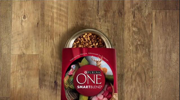 Purina One True Instinct TV Spot, 'Grain-Free Dog Food' - Thumbnail 1
