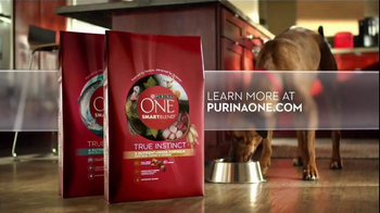 Purina One True Instinct TV Spot, 'Grain-Free Dog Food' - Thumbnail 8