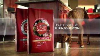 Purina One True Instinct TV Spot, 'Grain-Free Dog Food' - Thumbnail 8