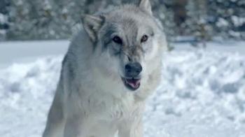 Toyota RAV4 Hybrid TV Spot, 'Wolf Pack' Featuring James Marsden - Thumbnail 4
