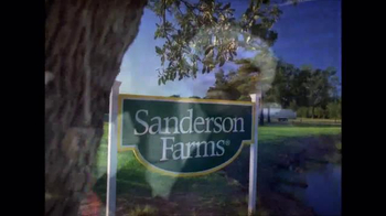 Sanderson Farms TV Spot, 'Merry Christmas and Happy Holidays'