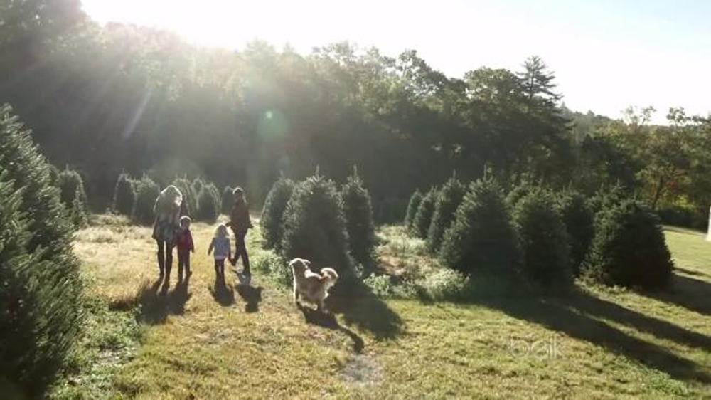 Belk TV Commercial, 'Christmas Tree Farm' - iSpot.tv