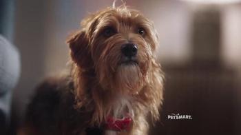 PetSmart TV Spot, '2016 Holidays: Christmas Kisses'