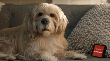 T-Mobile TV Spot, 'Dog Years: Cashback'