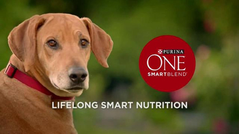 Purina One SmartBlend TV Spot, 'All in One' - Thumbnail 9