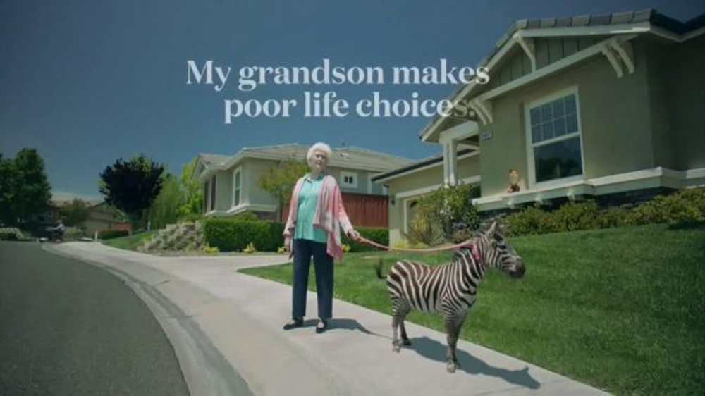 Safe Auto Quotes Safeauto Tv Commercial 'terrible Quotes Zebra'  Ispot.tv