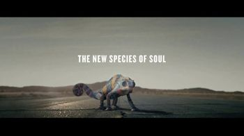 Best Soul Songs 2020 2020 Kia Soul TV Commercial, 'The New Species of Soul' Song by