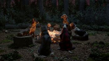 K9 Advantix Ii Tv Commercial Campfire Ispottv