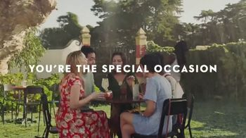 Grey Goose Vodka TV Commercial, 'Live Victoriously' - iSpot tv