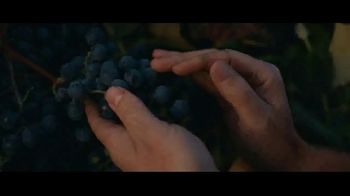 Welch's TV Commercial, 'Tough as Grapes' - iSpot tv