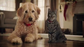 Petsmart Christmas Hours.Petsmart Tv Commercial Cats And Dogs Video