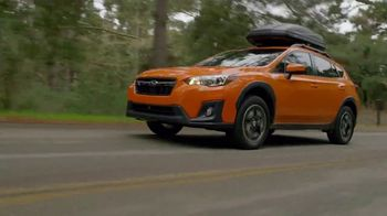 2019 Subaru Crosstrek TV Commercial, 'Love Is out There' [T2