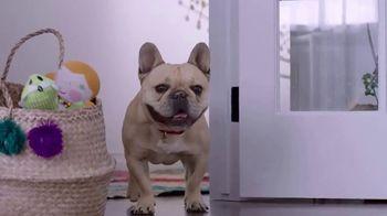 Milk-Bone TV Spot, 'Dogs Love More'