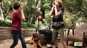 Excedrin Extra Strength TV Spot, 'Animal Planet: Bigfoot Calls' - Thumbnail 4