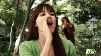 Excedrin Extra Strength TV Spot, 'Animal Planet: Bigfoot Calls' - Thumbnail 8