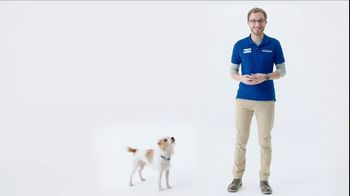 PetSmart TV Spot, 'Sam and BLUE Wilderness: Buy One Get Two Free'
