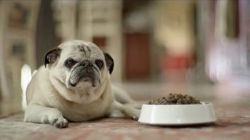 Freshpet Select TV Spot, 'Rudy the Picky Pug'