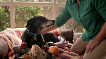 Blue Buffalo TV Spot, 'Pet Cancer Awareness 2017'