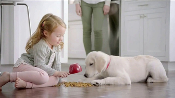 Big Moments: Safe Dog Food Using Quality Ingredients thumbnail