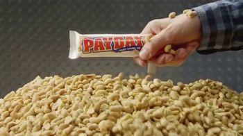 Payday TV Spot, 'Lotta Nuts'