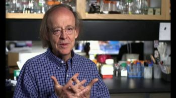 SEC TV Spot, '2017 Professor of the Year'