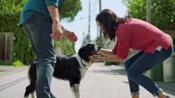 TracFone TV Spot, 'Lost Dog'