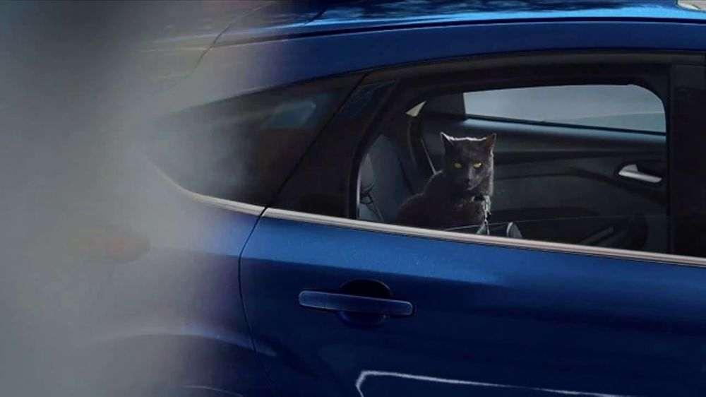 Ford Commercial With Cat And Dog
