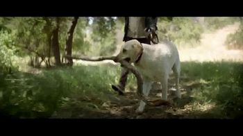 Nature's Recipe TV Spot, 'Fuel the Wag'