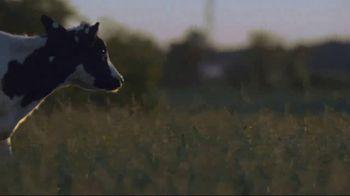 Borden Cheese TV Spot, 'Every Ounce'