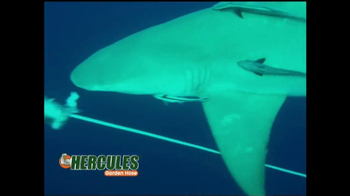 Hercules Hose TV Spot, 'Lightweight Design' - Thumbnail 6