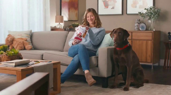 Purina Beneful Break-N-Bites TV Spot, 'You Gotta Get Cute'