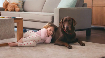 Purina Beneful Break-N-Bites TV Spot, 'You Gotta Get Cute' - Thumbnail 8