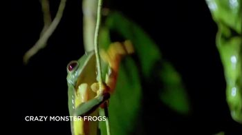 GEICO TV Spot, 'Smithsonian Channel: Crazy Monster Frogs'