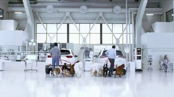 Kia Fall Savings Time TV Spot, 'Dog Walkers: 2017 Sportage' - Thumbnail 5