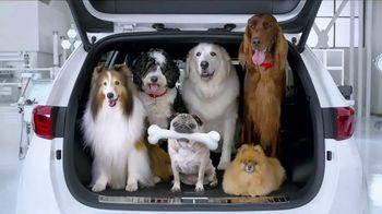Kia Fall Savings Time TV Spot, 'Dog Walkers: 2017 Sportage'