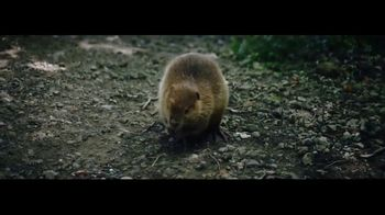 Sierra Trading Post TV Spot, 'Go Wild Folks: Fight or Flight'
