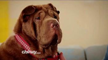 Chewy.com TV Spot, 'Chewy Customer Service Testimonials'