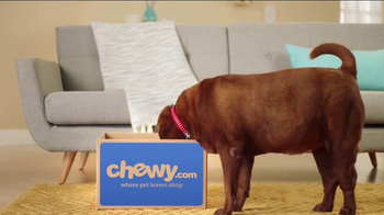 Chewy.com TV Spot, 'Chewy Customer Service Testimonials'