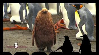 iSpot.tv TV Spot, 'Penguin Dating'