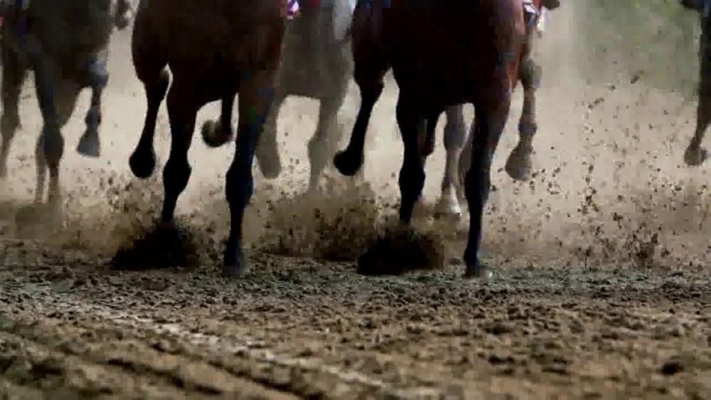 2017 Volkswagen Tiguan TV Commercial, 'That Feeling: Horses' Song by Grouplove - iSpot.tv