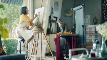Meow Mix Bistro Recipes TV Spot, 'Painting'