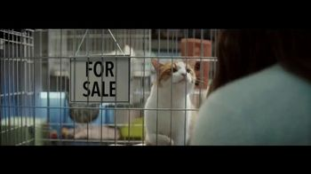 Planet Fitness TV Spot, 'The World Judges. We Don't: Cat'