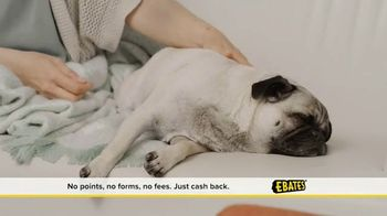 Ebates TV Spot, 'Free Money'