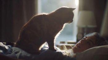 Amazon Echo Dot TV Spot, 'Alexa Moments: The Purrfect Message'