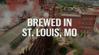 Budweiser TV Spot, 'Across America' Song by Goodbye June