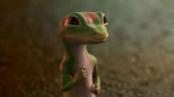 GEICO TV Spot, 'The Gecko Visits Coney Island'